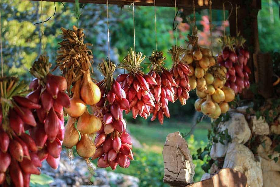 hanging onions