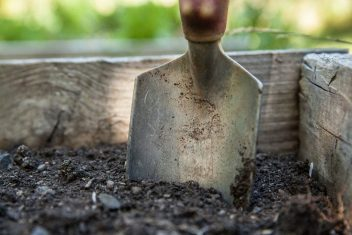 trowel-in-soil