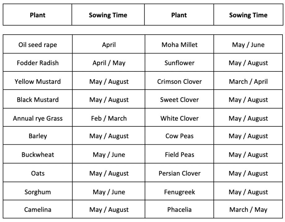 when to plant cover crops