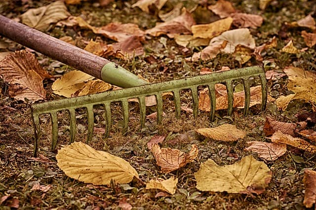 picture of jobs to do in the garden in October