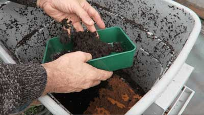 collecting worm castings from a worm bin
