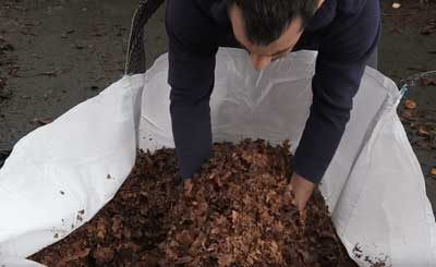Tony O'Neill holding chopped leaves in a 1 ton bag