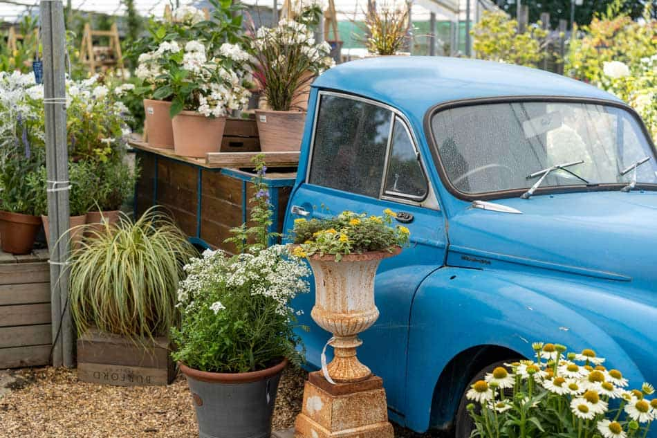 old truck with potted plants at malvern taken by Tony O'Neill