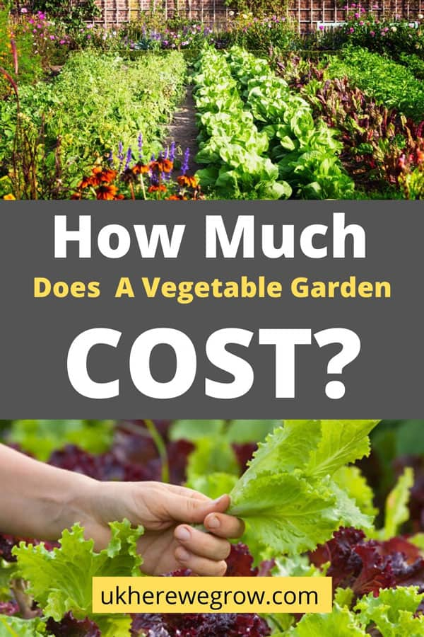 How much does a vegetable garden cost? With examples