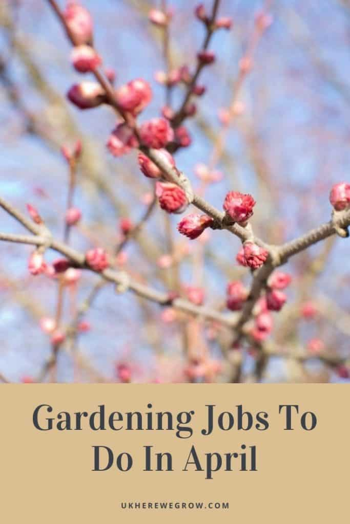 Gardening Jobs To Do In April