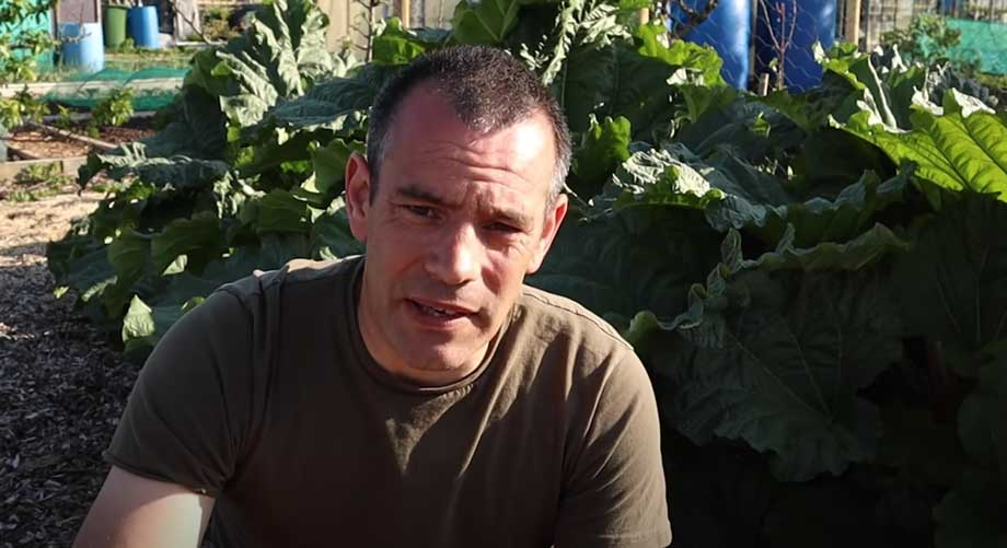 Tony O'Neill sat in front of large rhubarb plant