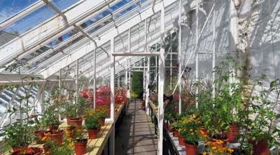 Can A Greenhouse Have A Flat Roof Simplify Gardening