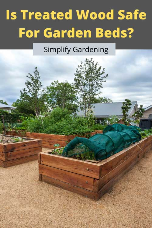 Is It Safe to Use Treated Wood For Vegetable Gardens