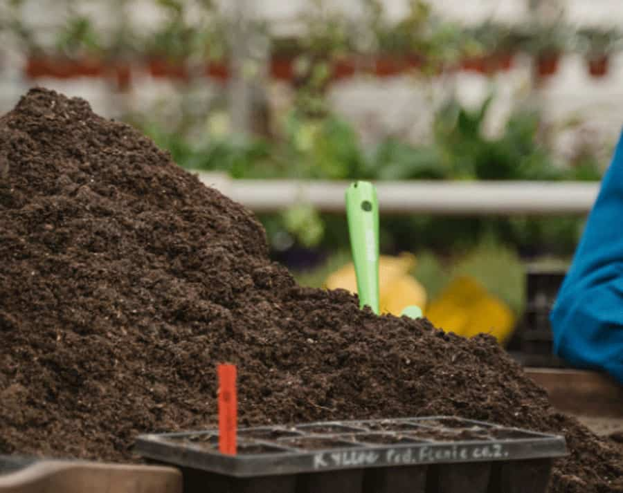 pile of compost on a potting bench