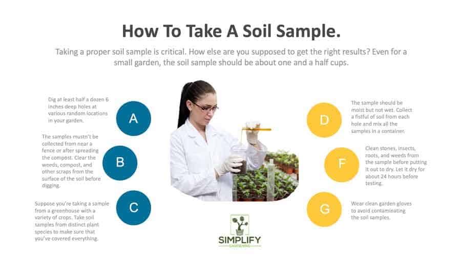 infographic of how to take a soil sample