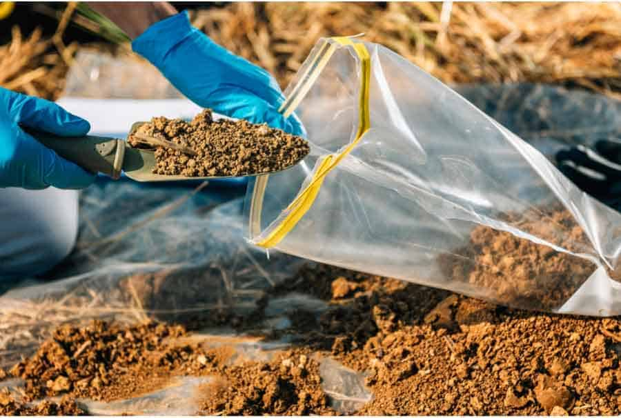 Picture of placing soil into plastic bags