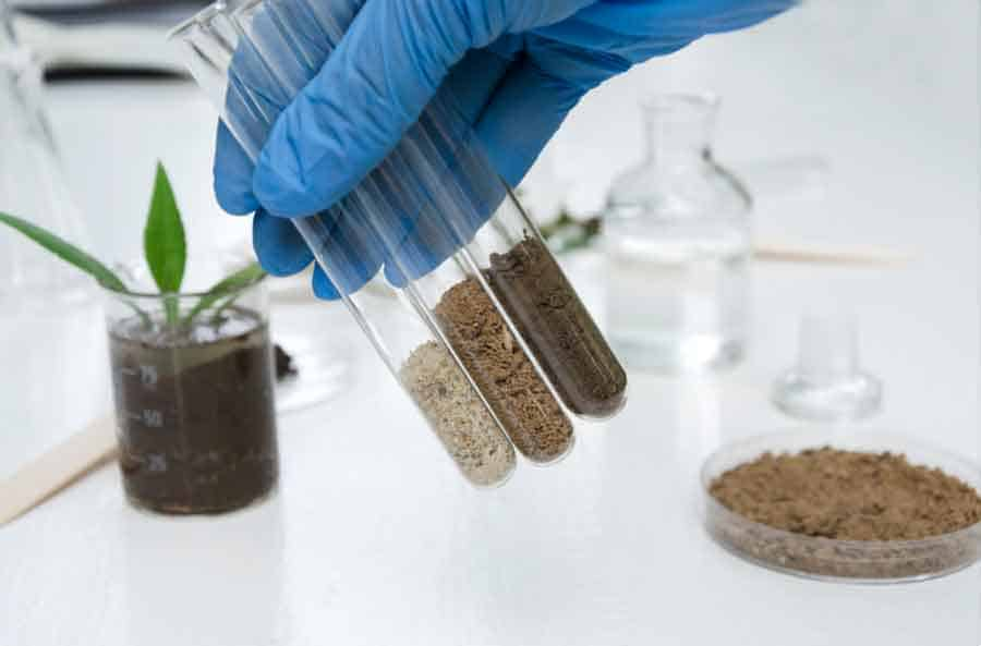 Picture of different soil samples in test tubes