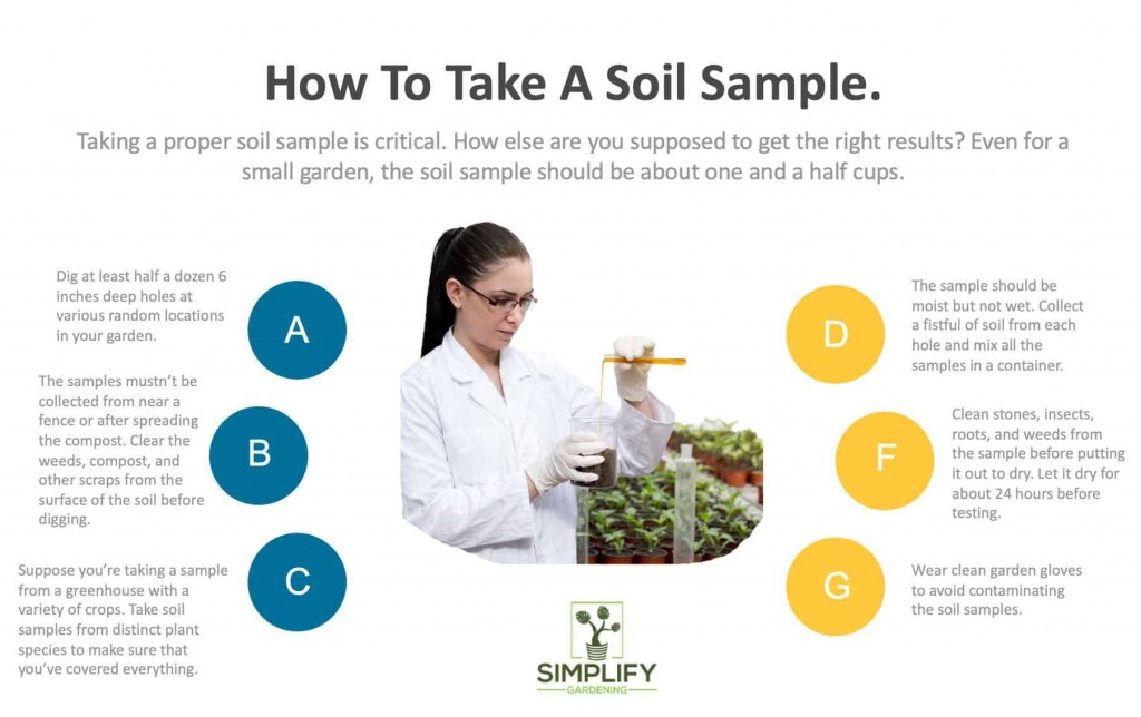 infographic in how to take a soil sample