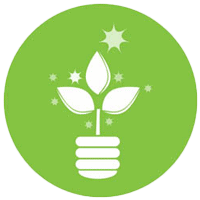 Picture of plant icon