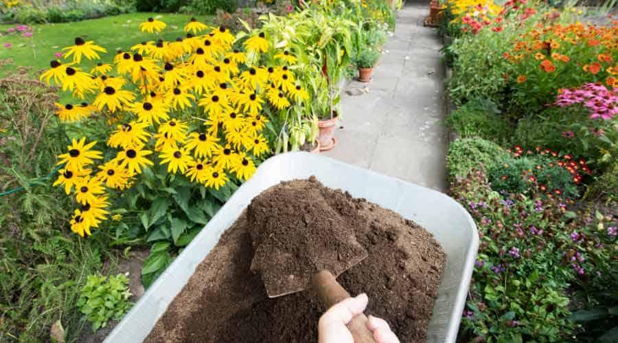 wheel barrow of soil