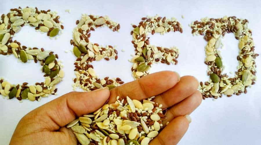 hand holding seeds and the word seed spelt with seeds