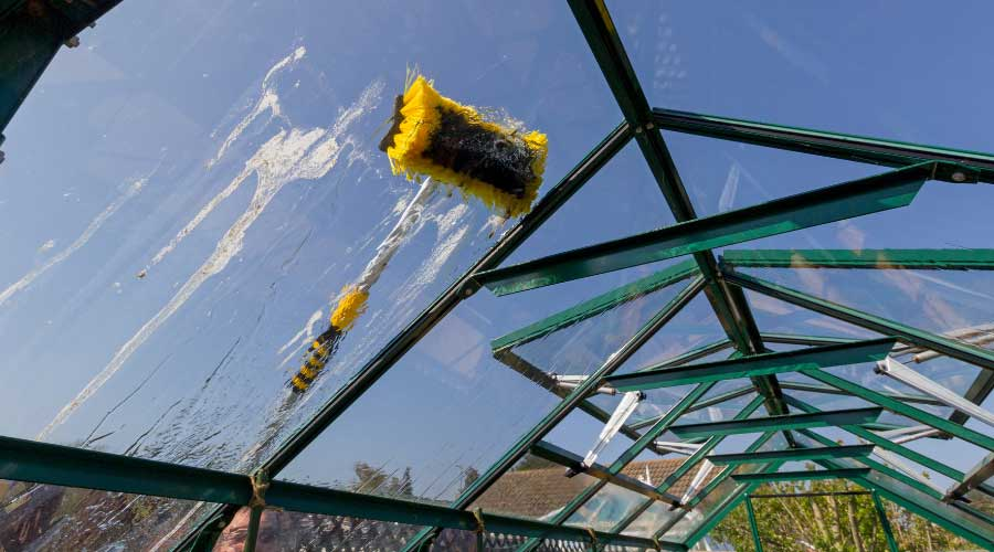 washing greenhouse glass with brush