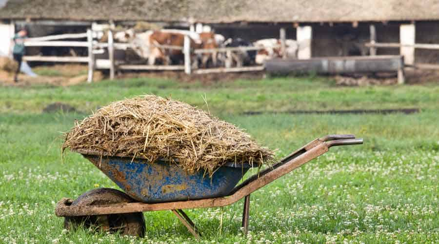 wheelbarrow full of straw
