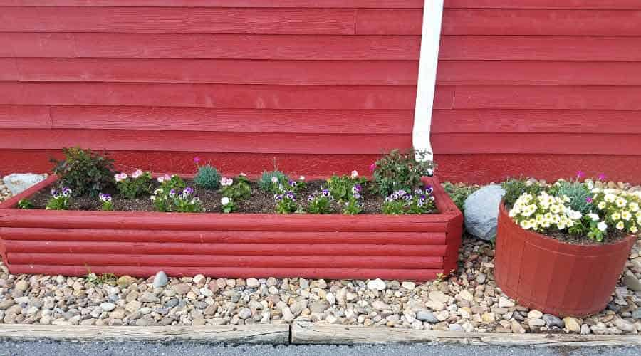 red raised vegetable bed with flowers