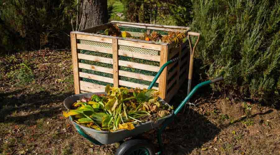compost bin and wheelbarrow of vegetable scraps