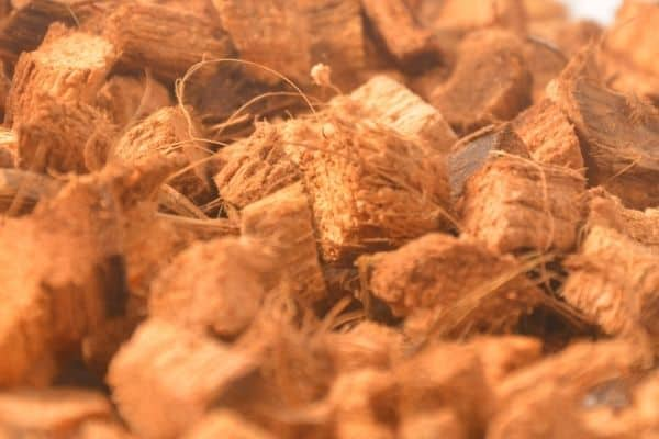 picture of coconut chips