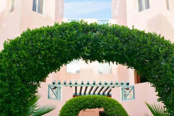 Picture of a garden arch
