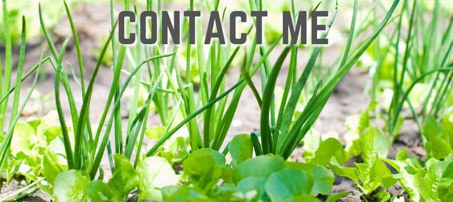 contact me page header