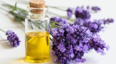 lavender essential oil in a bottle