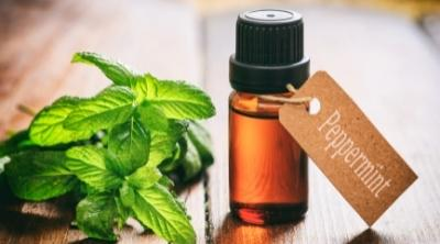 peppermint essential oil in a bottle