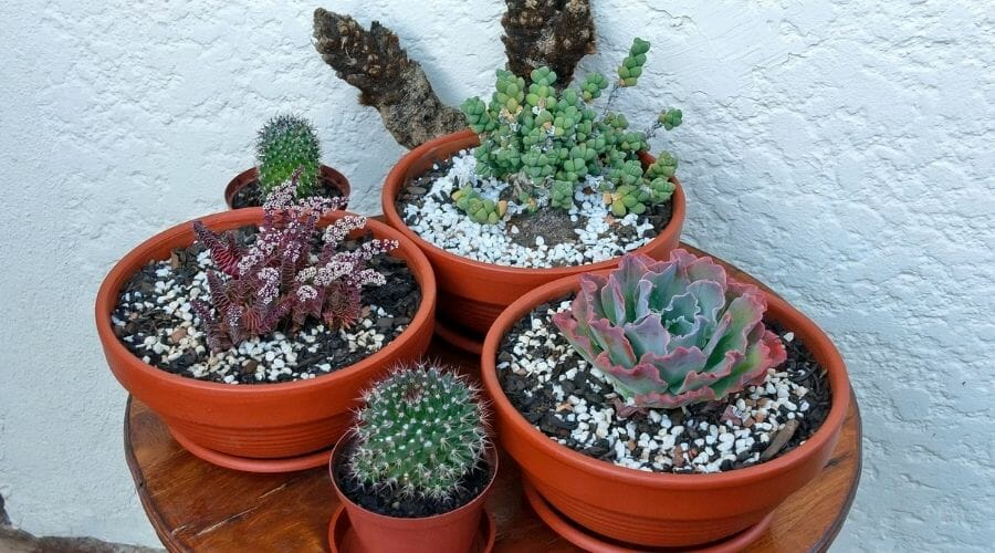 Picture of pots with different sizes
