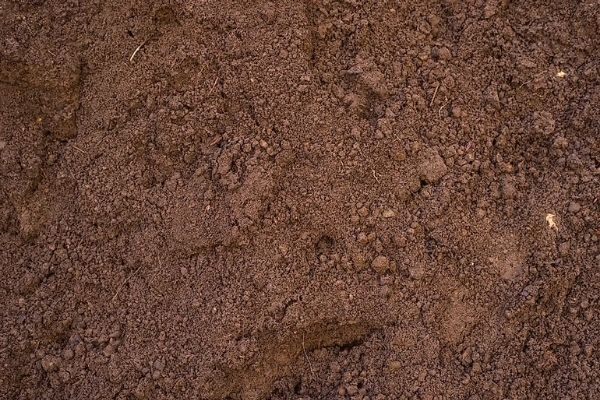 Picture of structureless soil