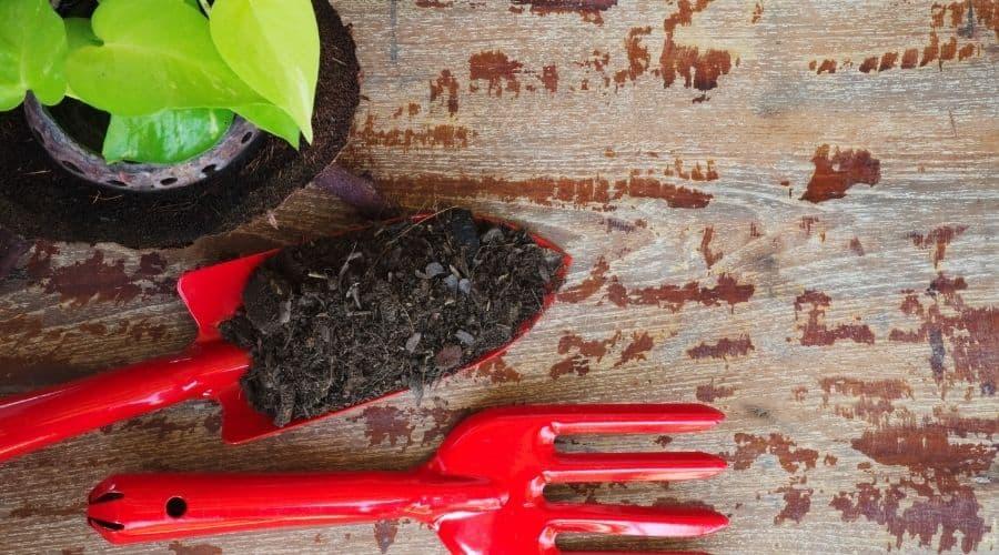 red gardening tools