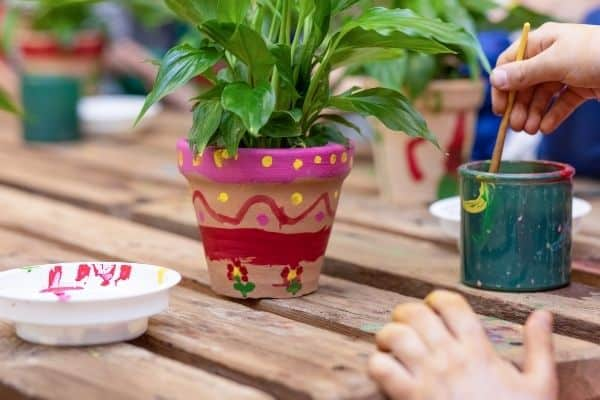 painting clay pot with plant