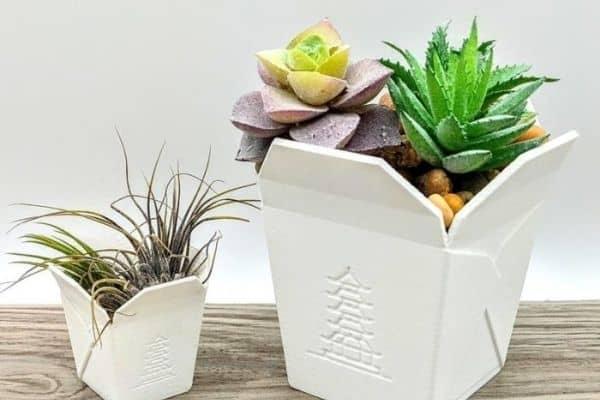 Chinese succulent pots