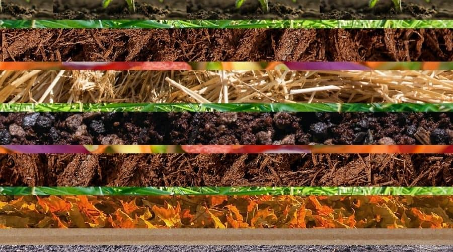 Picture of the layers of lasagna gardening
