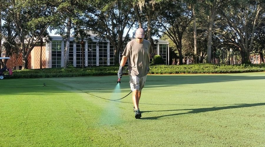 Pictue of a man spraying paint on lawn