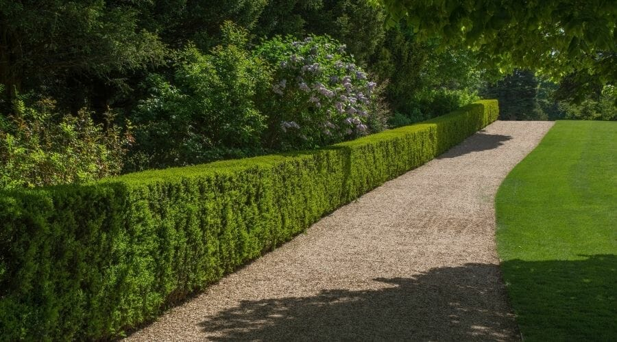 Picture of a neat gravel path alongside a grass lawn