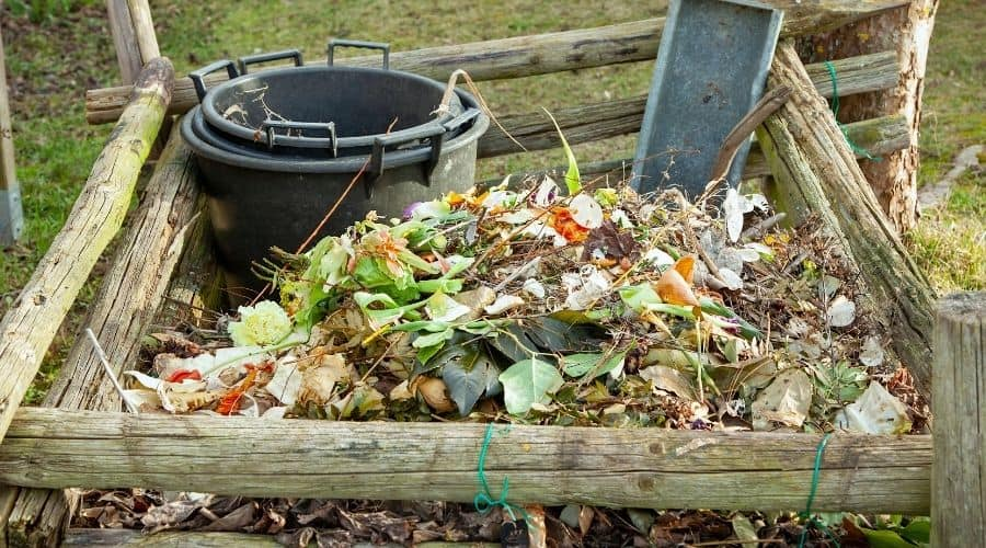 Picture of a pile of a composting organic waste