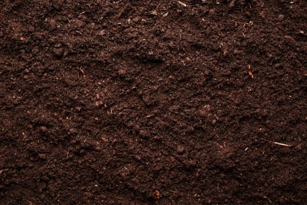 Picture of soil flooring
