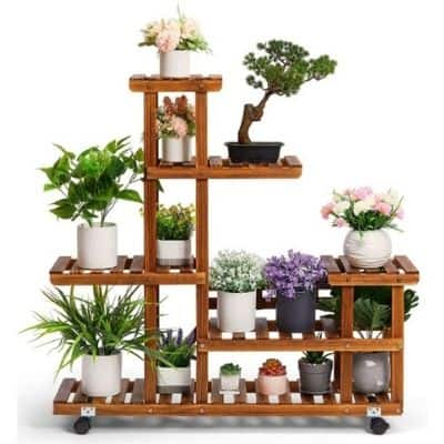 Picture of a Patio Shelf with Plants