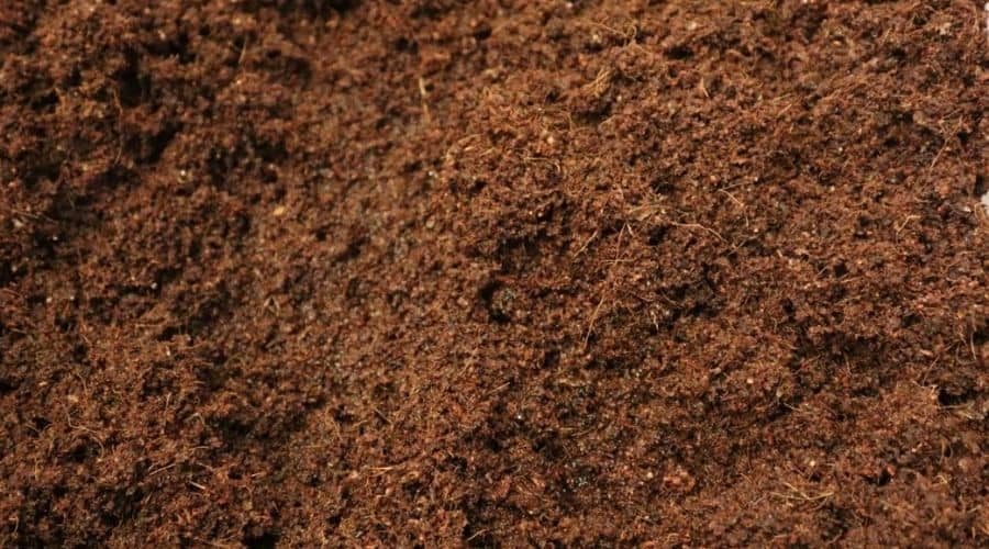 Picture of coconut coir