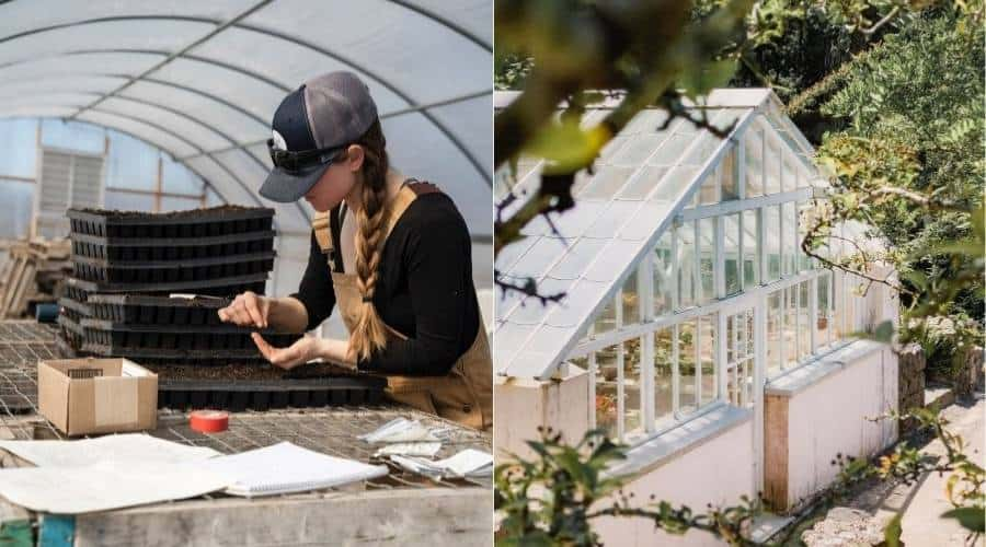 A picture of both a hoop house and a greenhouse