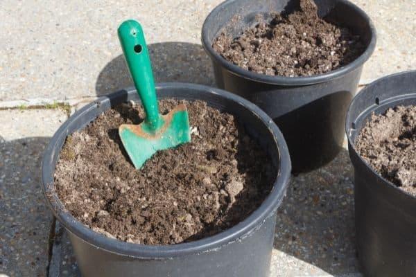 soil in buckets with green trowel