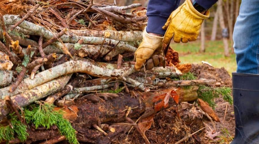 hugelkultur - dead wood logs