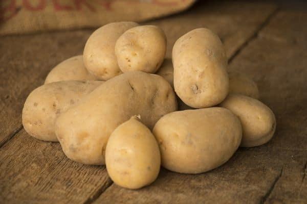 picture of Nicola potatoes