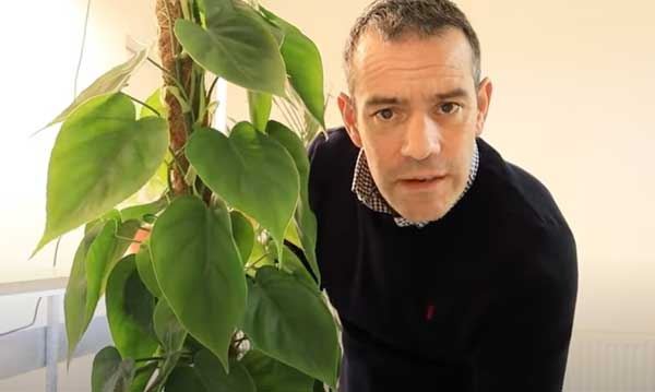 Tony O'Neill with a Pothos