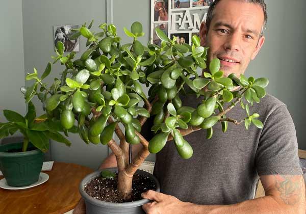 Tony O'Neill with a jade plant