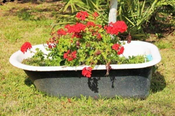 Vintage Bathtub Planter