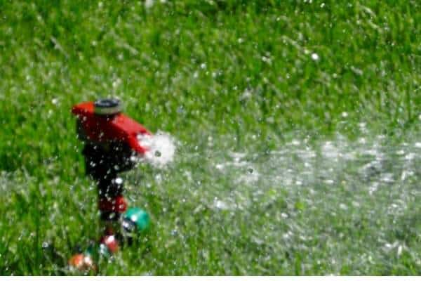A picture of a sprinkler watering a lawn