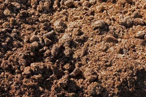 Picture of soil with manure
